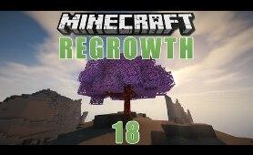 Minecraft Regrowth - #18 - Cypress Hill